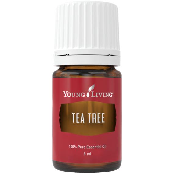 Young Living Teafa (Tea Tree)